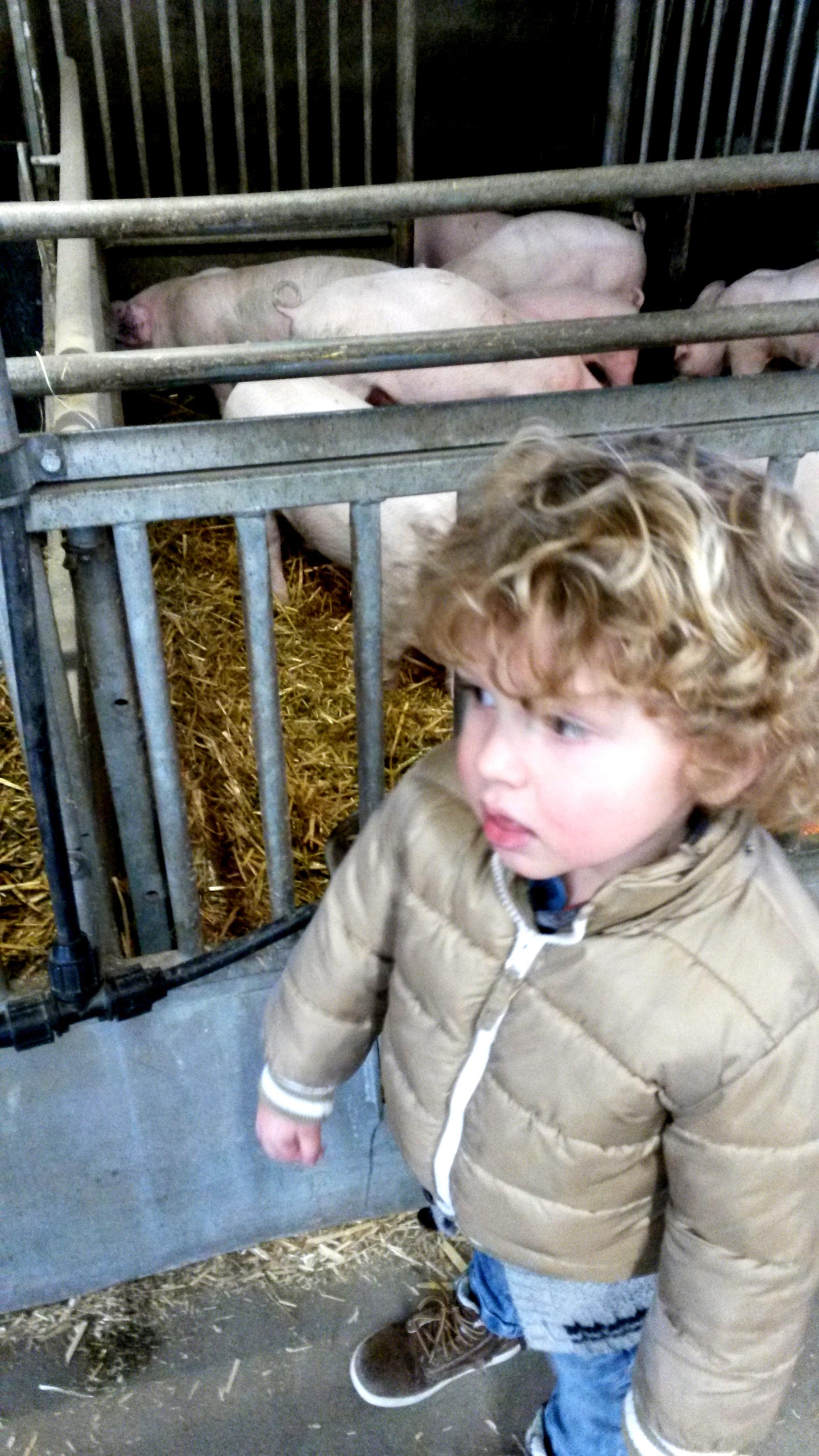 Kinderopvang Arnhem